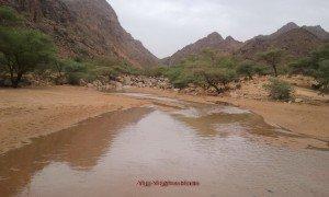Oued Tassalwat